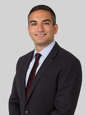 Sean Milani-nia