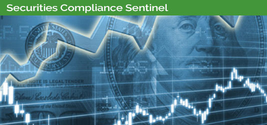 Securities Compliance Sentinel Blog Banner