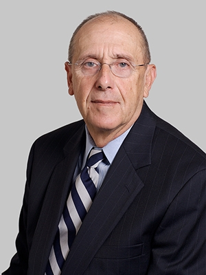 Mark Z. Segal